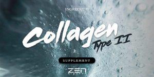 สารสกัดจาก คอลลาเจนไทพ์ทู Collagen type II