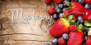 สารสกัดจากเบอร์รี่เข้มข้นสำกัด Mix Berry